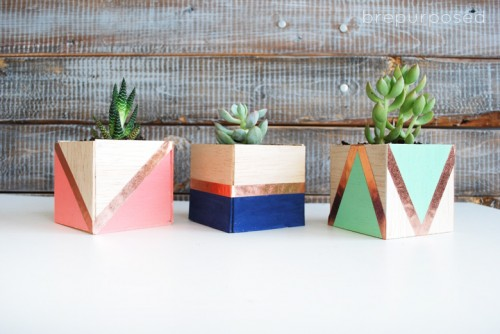 DIY Color Block Balsa Wood Planters