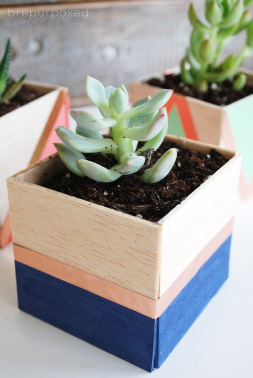 DIY Color Block Balsa Wood Planters
