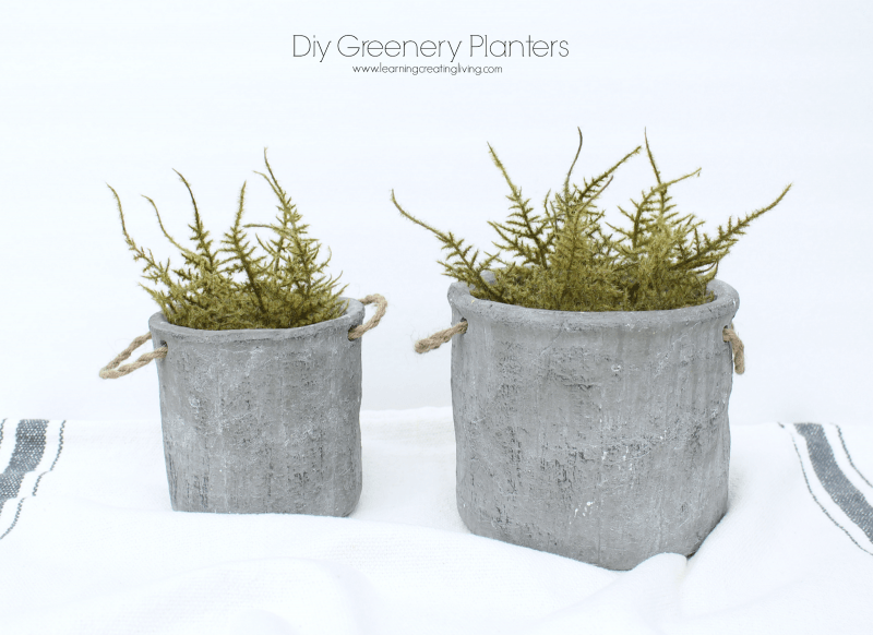 DIY Concrete Herb Garden To Make