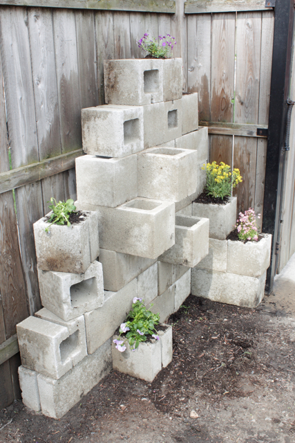12 DIY Concrete Outdoor Planters