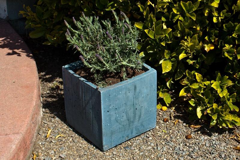 concrete cardboard tape box