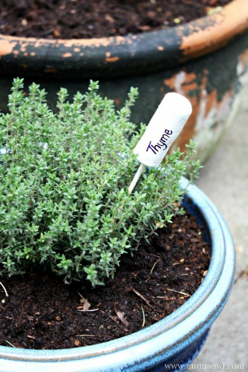 DIY Cork Marker For Herbs And Veggies