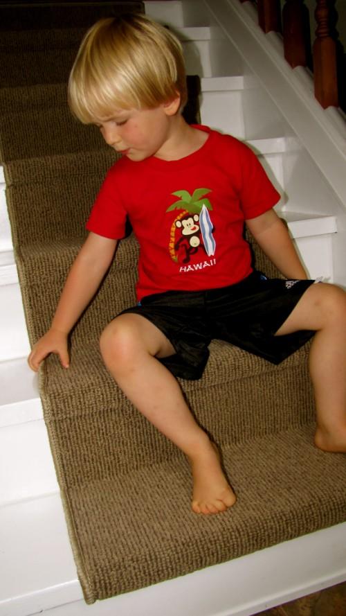 inexpensive carpet stair runner (via mamasdance)