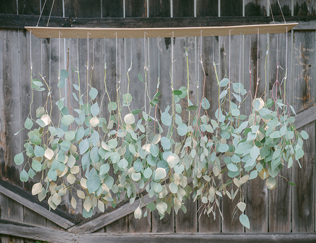 eucalyptus chandelier