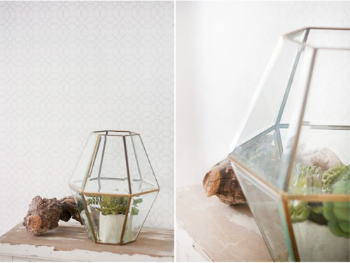 Diy Faceted Hanging Terrarium