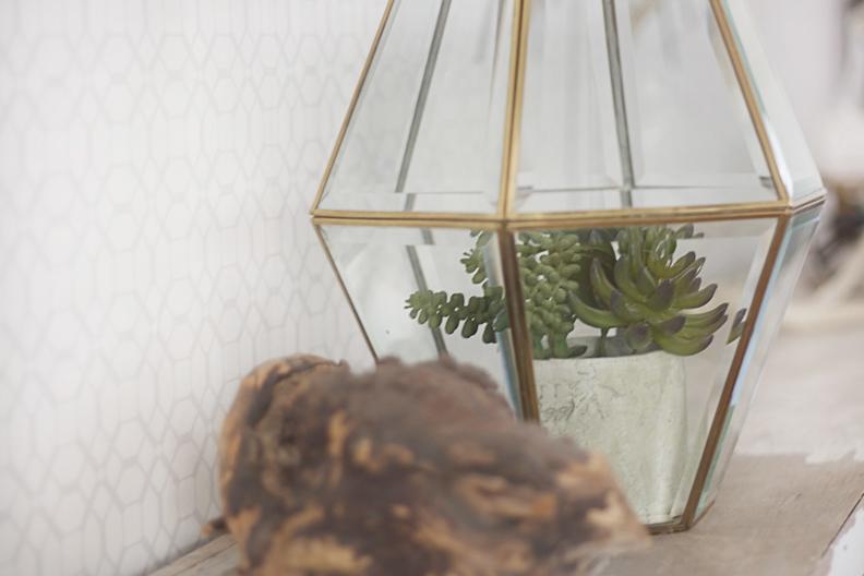 Diy Faceted Hanging Terrarium