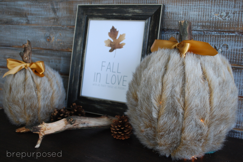 Picture Of diy faux fur covered pumpkins for fall and winter decor  1