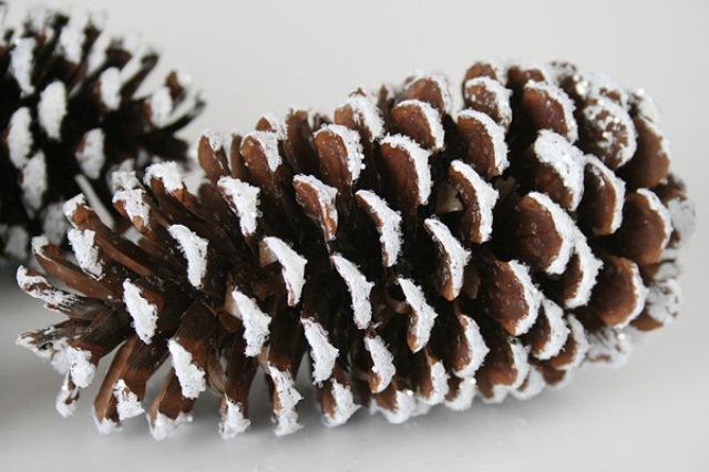 Diy Faux Snowy Pinecones For Winter Decor