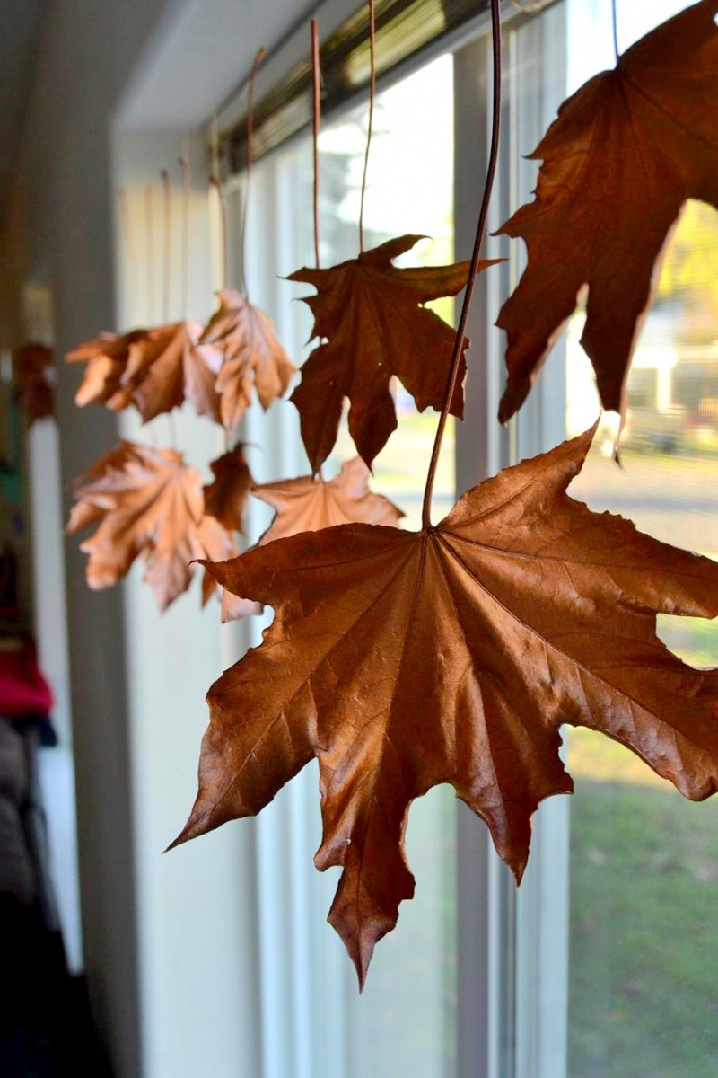 Picture Of diy floating fall leaves garland for home decor  7