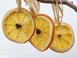 sunny citrus ornaments