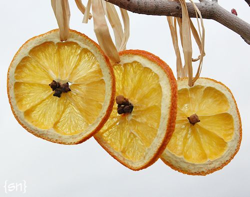 sunny citrus ornaments (via simplynotable)