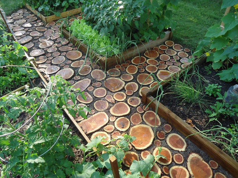 Diy Garden Path Of Wood Slabs | Shelterness