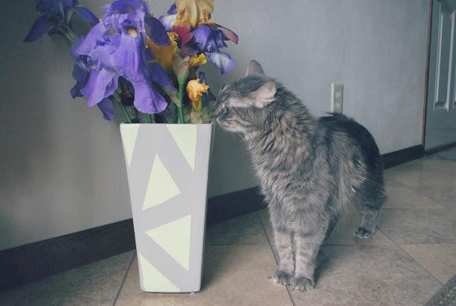 painted geo vase