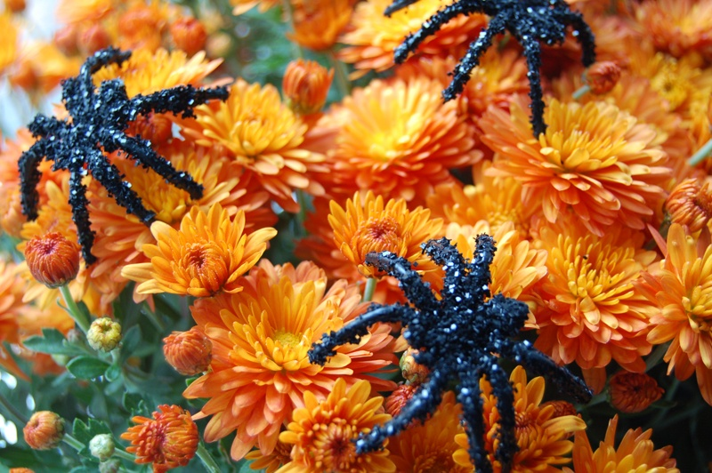 Diy Glittered Spiders To Turn Your Fall Decor Into Halloween One