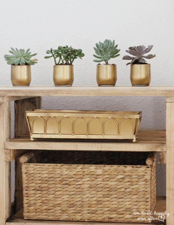 gold succulent vases