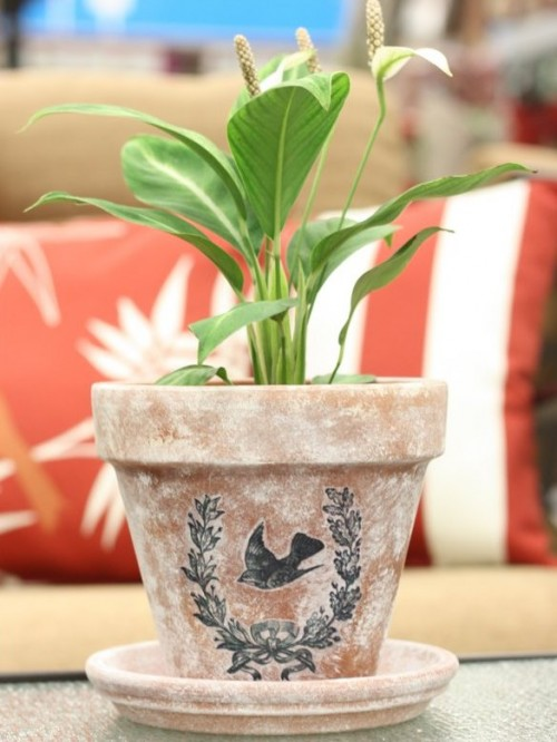 DIY Graphic Stenciled Flower Pot