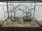 Diy Graveyard Mini Terrariums