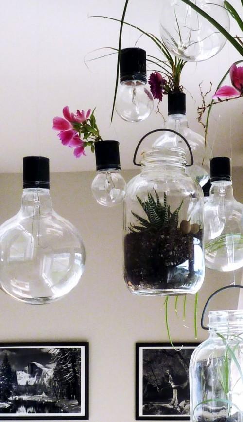 DIY Eco-Friendly Hanging Garden