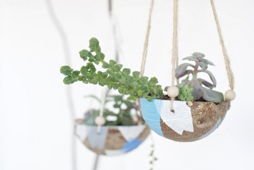 Diy Hanging Planter Of A Coconut