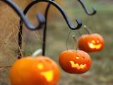 Diy Hanging Pumpkin Lanterns