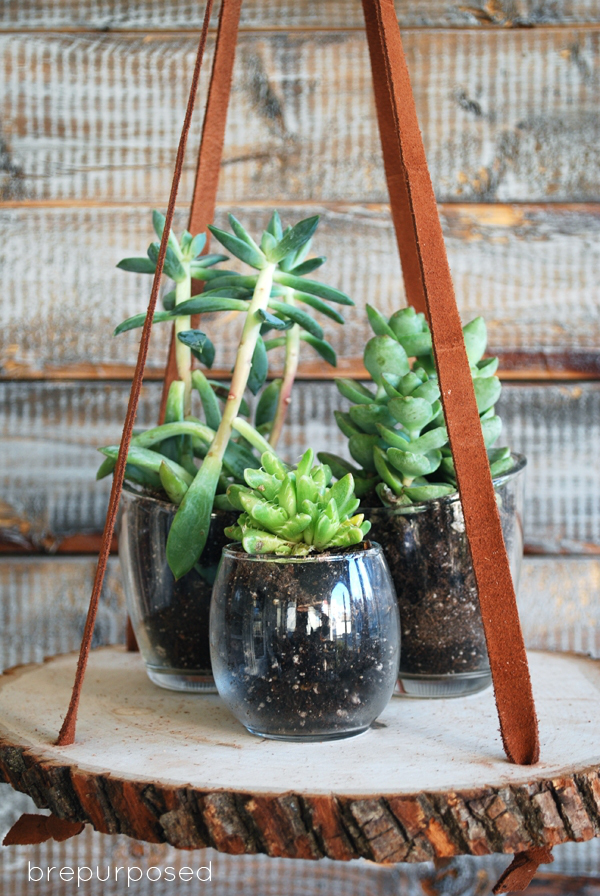 Picture Of diy hanging wood slice plant stand  1