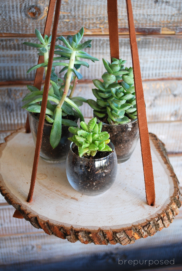 Picture Of diy hanging wood slice plant stand  3