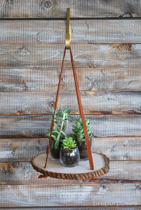 Picture Of diy hanging wood slice plant stand  4