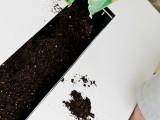 Diy Herb Garden Coffee Table For Outdoors