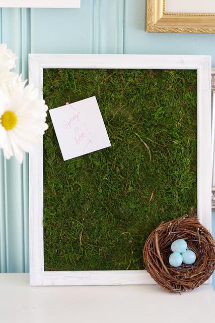 spring moss bulletin board