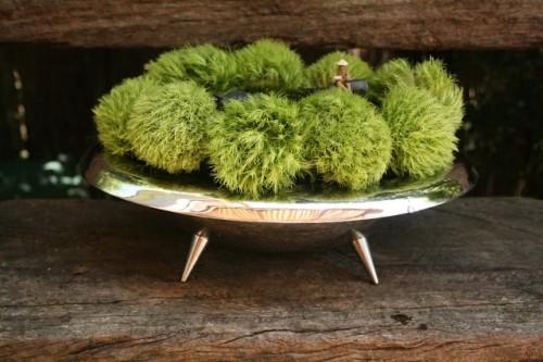 moss centerpiece (via spiderflower)