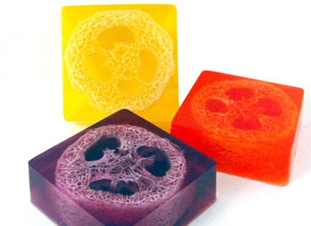 Diy Loofah Soap For A Spa Like Experience