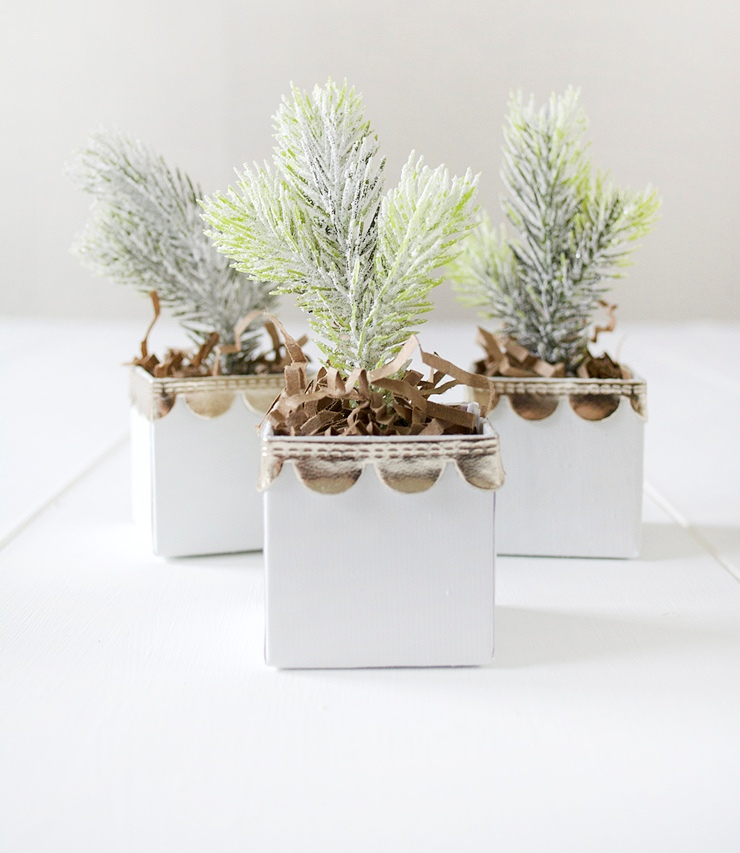 Picture Of diy mini christmas trees in boxes  1