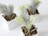 diy-mini-christmas-trees-in-boxes-2