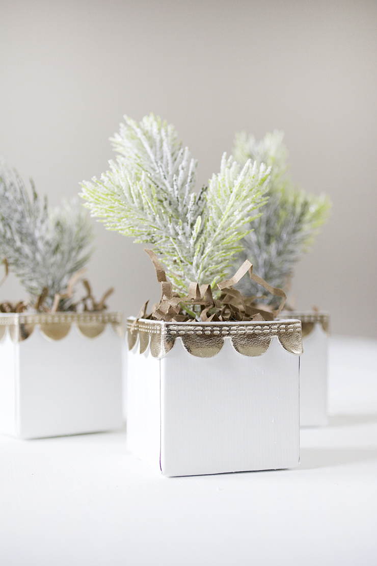 Picture Of diy mini christmas trees in boxes  6