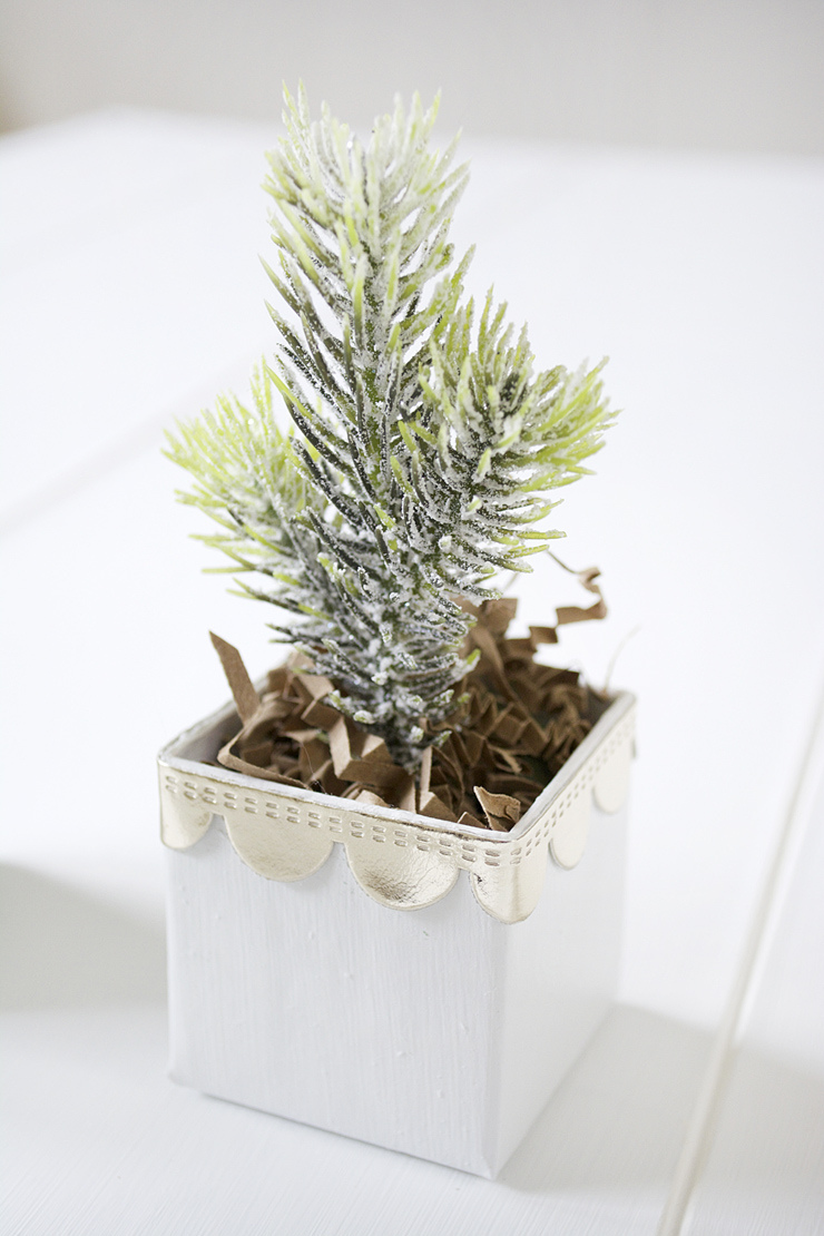 Picture Of diy mini christmas trees in boxes  7