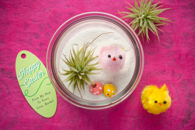 Diy Mini Easter Terrariums