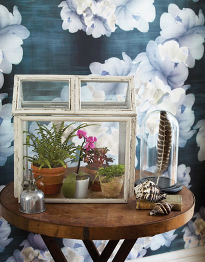 DIY Mini-Greenhouse from Picture Frames