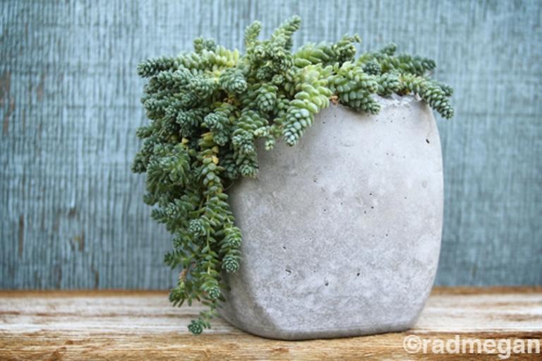 Diy Minimalist Concrete Pots