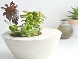 diy-minimalist-round-concrete-planter-1