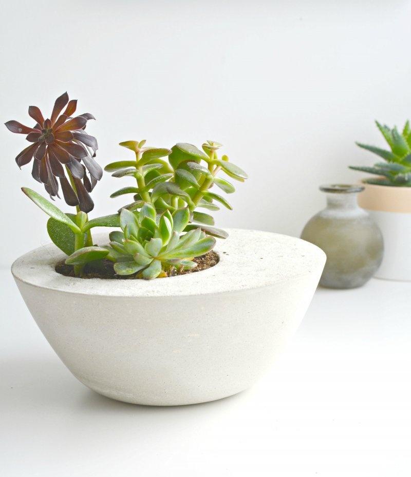 Picture Of diy minimalist round concrete planter  1
