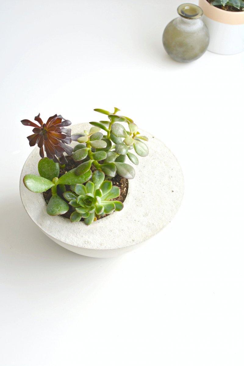 Picture Of diy minimalist round concrete planter  3