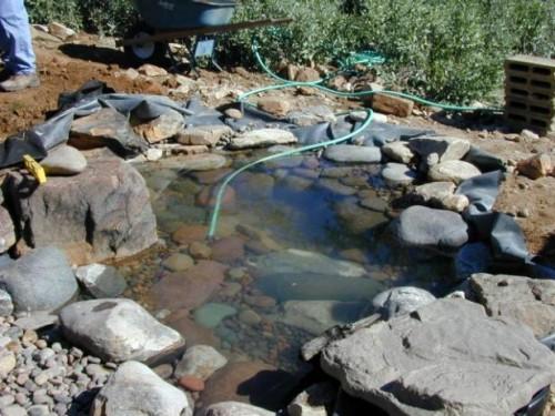 rock pond with a stream (via diynetwork)