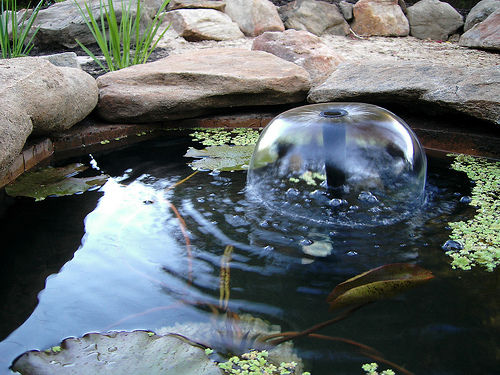 rock fish pond  (via instructables)