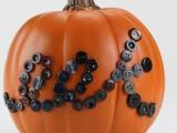 eek buttoned pumpkin