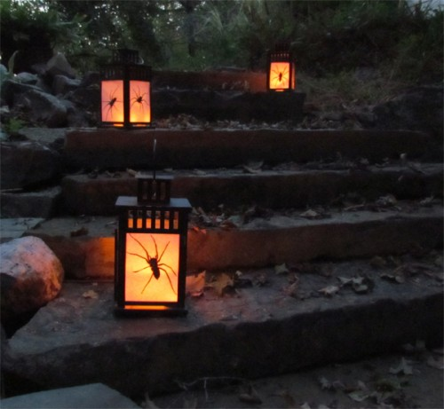Diy Outdoor Halloween Lanterns With Spiders Inside