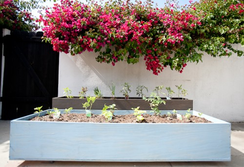 Diy Outdoor Wood Planters On Casters