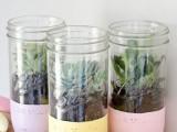 Diy Painted Mason Jar Succulent Planters