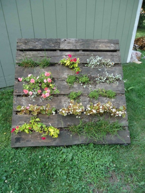 DIY Pallet Vertical Garden Shelterness