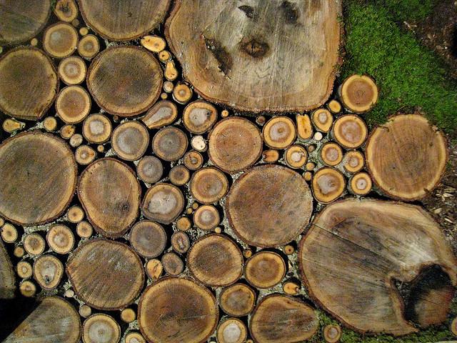 Diy Pathway Of Wood Slices