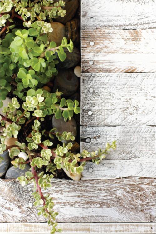 Diy Patio Coctail Table With Mini Garden